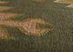 bedouin green jute and hemp flat weaves Rug - CloseUp